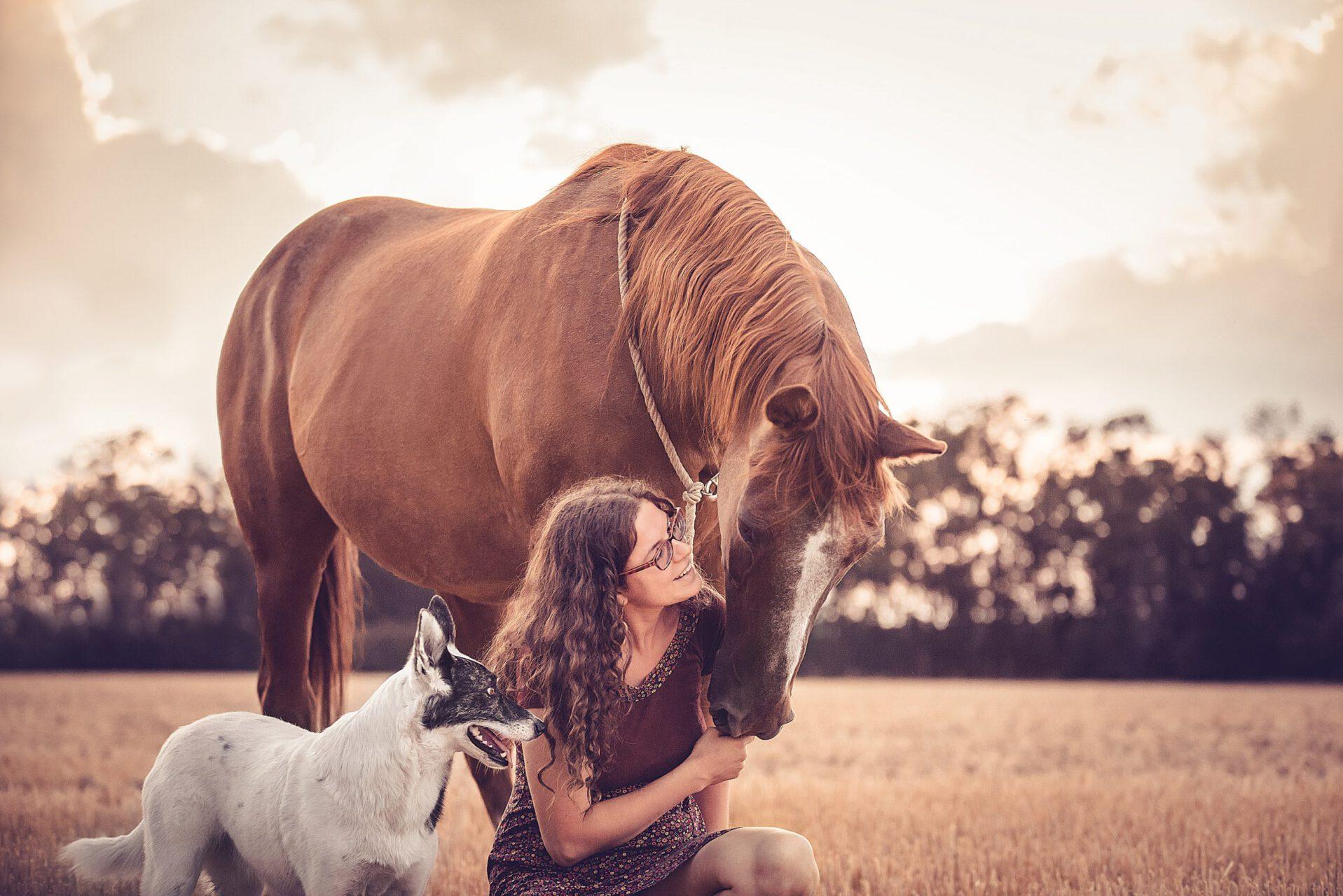 Tierkommunikation Pia Eileen Ruminski Herzen öffnen verbinden und heilen in Hannover und Deutschlandweit